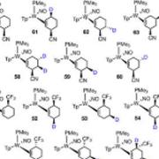 生物拆分生产光学纯左旋泛解酸内酯