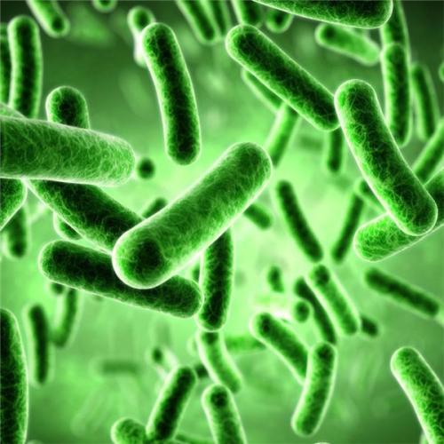 一种抗菌防护环保新材料的开发和运用