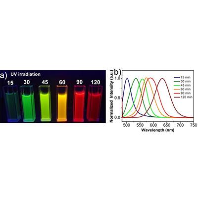 量子点荧光探针快速检测生物活性分子