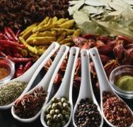 提质增效海鲜调味料生产技术及产业化