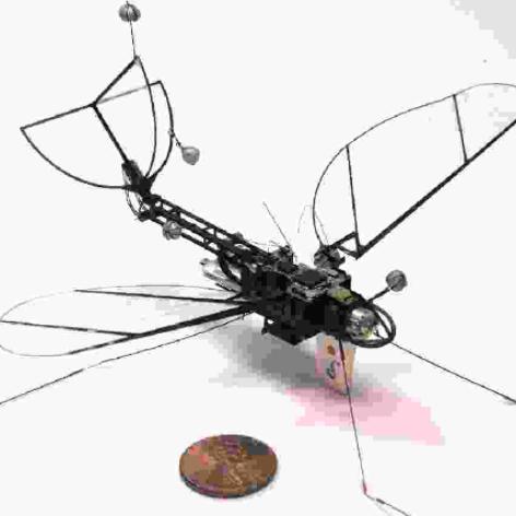 一种双驱类扑翼飞行器
