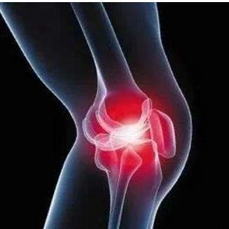 一种具有抗骨关节炎功效的中药复方及其应用