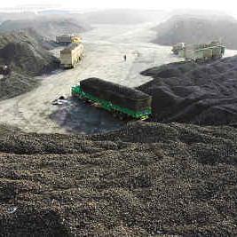 复合菌种煤炭生物絮凝剂及其净化煤泥水的方法