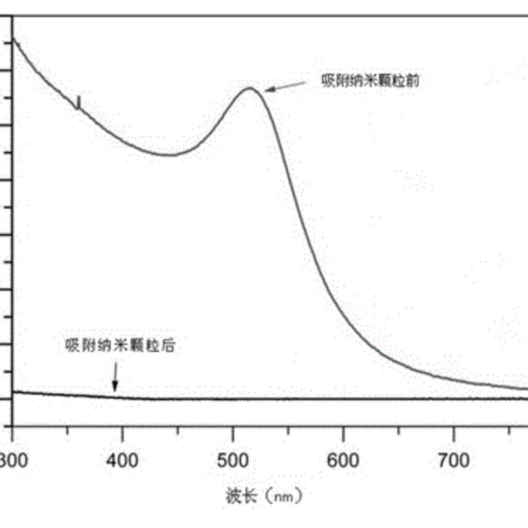 一种亲水性甲基丙烯酰胺聚合物整体柱的制备方法及其应用