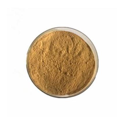 淡竹叶总黄酮在制备防治心肌缺血疾病的药物及功能性食品中的应用